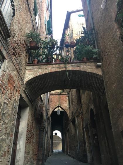 Siena streets